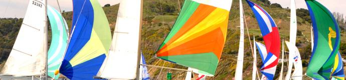 Spinnakers on San Francisco Bay