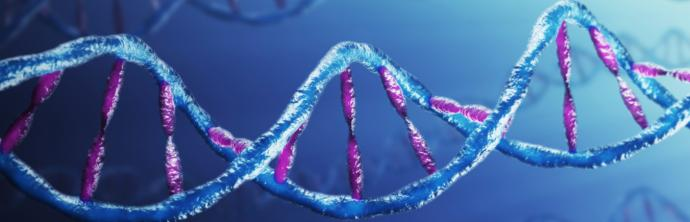 Prostate Cancer Gene Expression Testing at UCSF