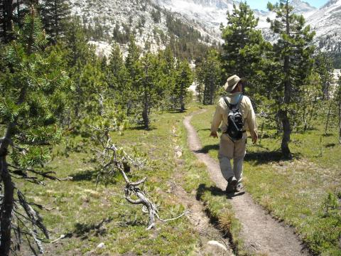 Man hiking in wilderness