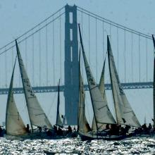 Racing on the Bay