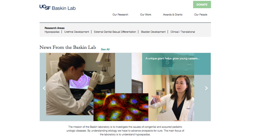 Index page of new Baskin lab website